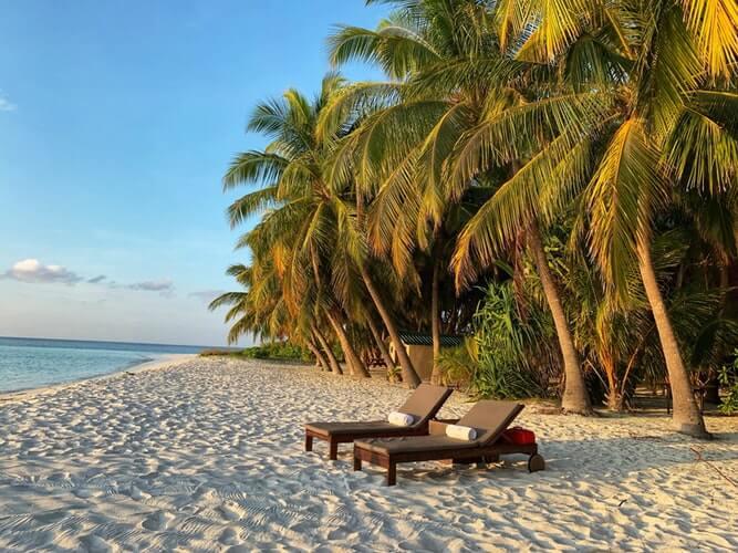 Tropikalna plaża z palmami i leżakiem – wakacje a koronawirus